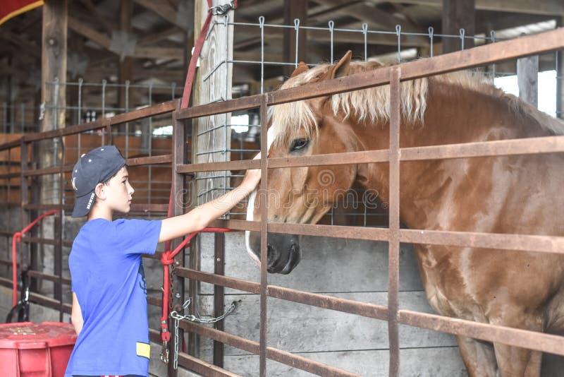 Cavalo o Condado de Walworth das trocas de carícias do menino justo imagem de stock royalty free