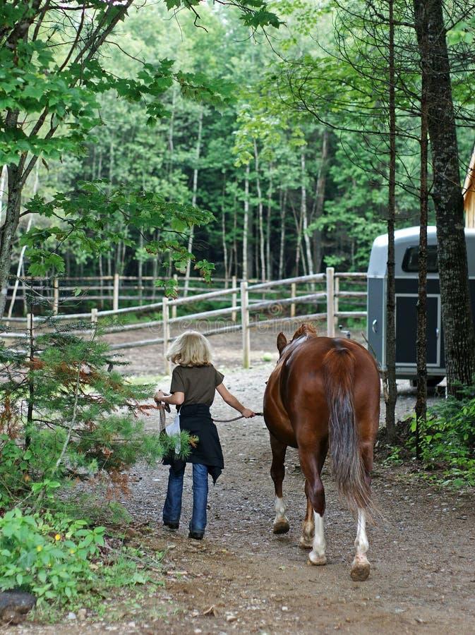 Cavalo principal da menina loura imagens de stock royalty free