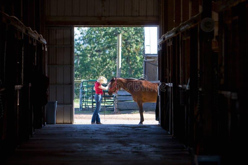 Cavalo que começ um animal de estimação - horizontal fotografia de stock royalty free