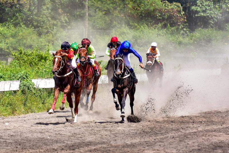 Cavalo Racing fotos de stock