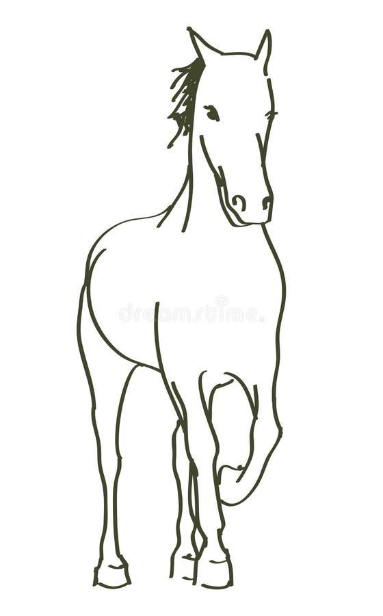 Cavalo tirado mão ilustração royalty free
