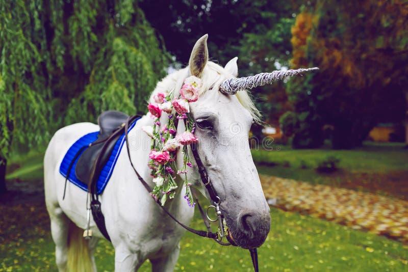 Cavalo vestido como um unicórnio com o chifre Ideias para o photoshoot casamento Partido outdoor fotografia de stock royalty free