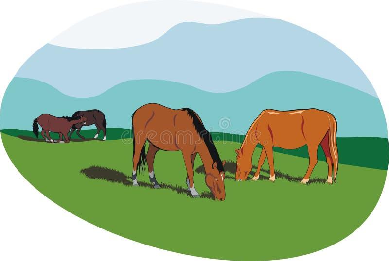 Cavalos ilustração royalty free