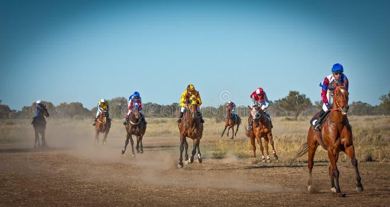 Cavalos de raça que retornam à escala no arbusto australiano por acaso nos piqueniques vindos NSW Austrália foto de stock royalty free