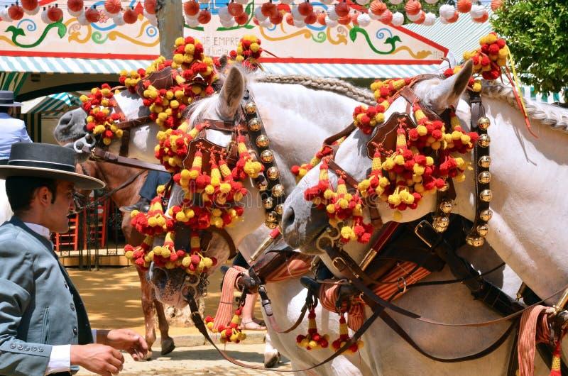 Cavalos de transporte com o cocheiro durante o festival de mola 201 de Sevilha fotos de stock royalty free