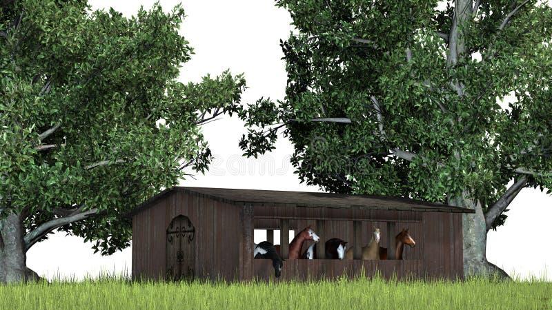 Cavalos em um celeiro de madeira velho entre árvores ilustração royalty free
