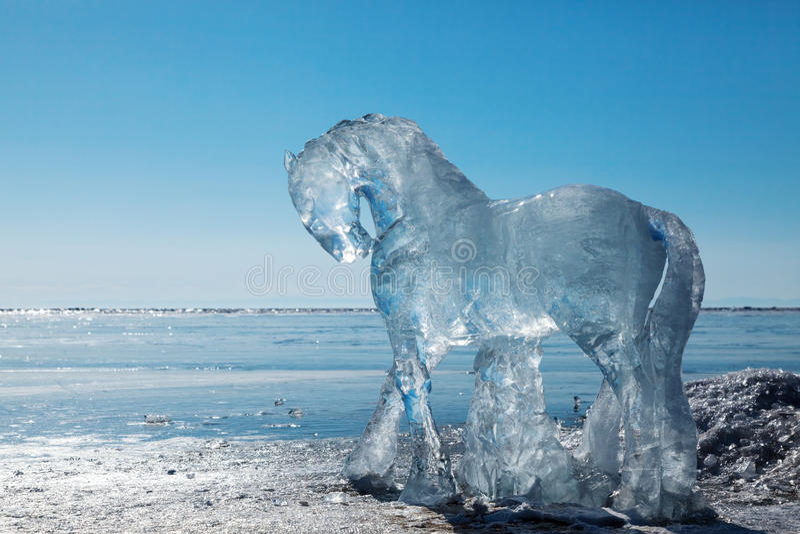 Cavalos, esculturas do gelo imagens de stock