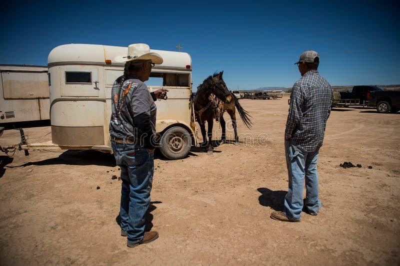 Cavalos Feira de comércio de cavalo fotografia de stock royalty free