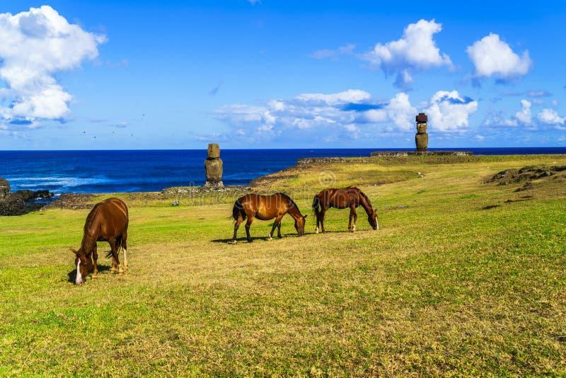 Cavalos que pastam em Ahu Tahai e em Ahu Ko Te Riku fotos de stock royalty free