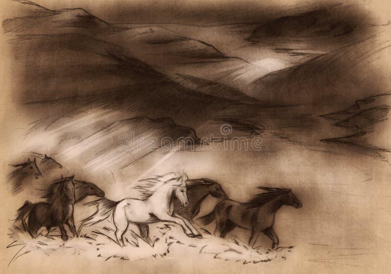 Cavalos selvagens ilustração royalty free