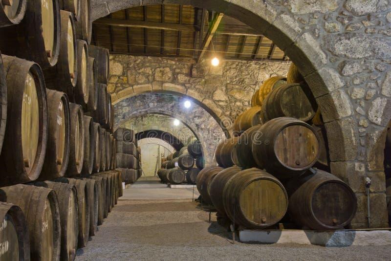 Cave avec des barils de vin photos libres de droits
