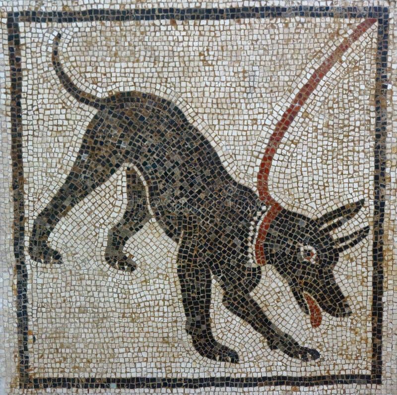 Cave canem mosaïque, Pompeii image libre de droits