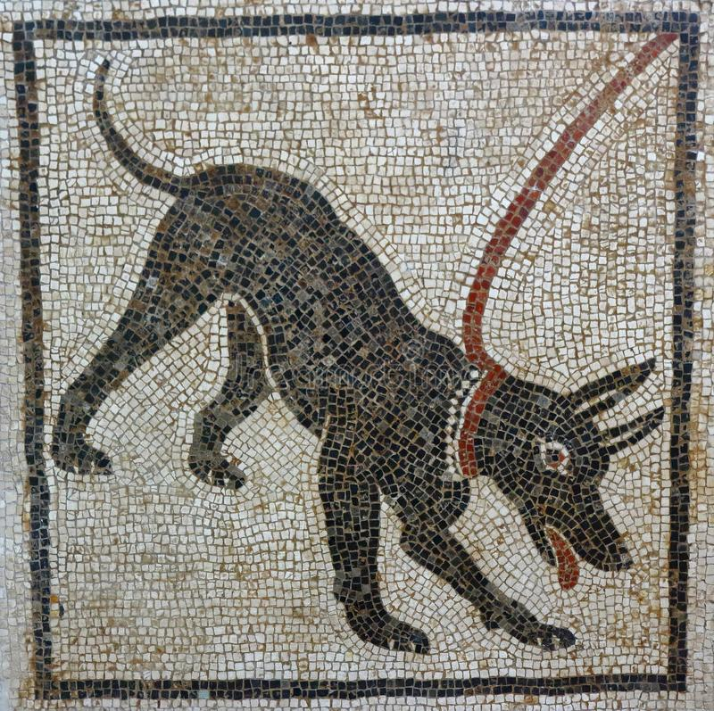 Cave Canem mosaic, Pompeii. Floor mosaic with `Beware of the dog` warning at the ancient Roman city of Pompeii, which was destroyed and buried by ash during the royalty free stock image