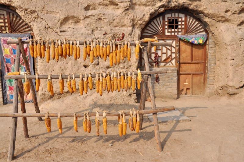 Grãos na frente da casa da caverna foto de stock royalty free