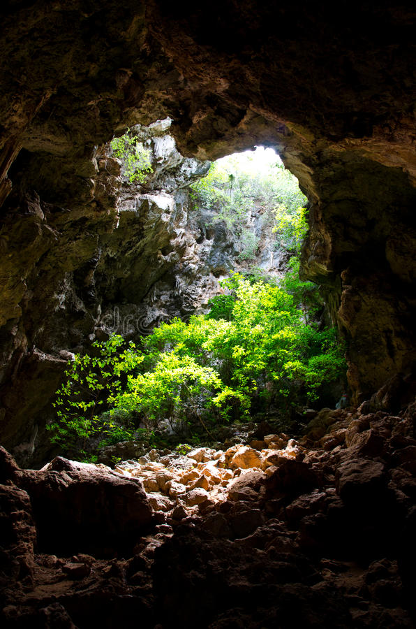 Cave covered with trees. Entrance to natural caves with lush greenery stock photo