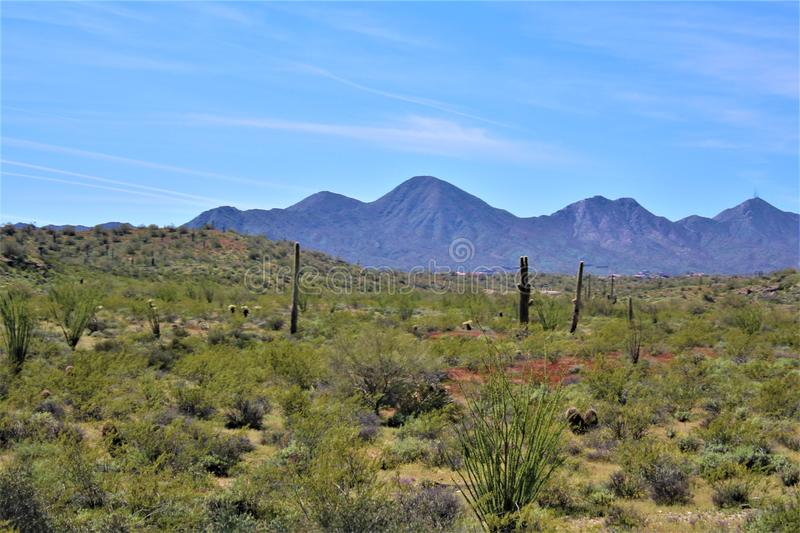 Cave Creek, Maricopa County, Arizona, United States. Landscape view of vegetation and mountains located at Cave Creek, Maricopa County, Arizona, United States royalty free stock photography