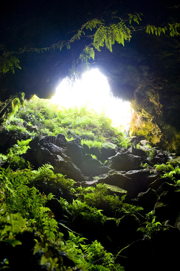 Cave Entrance. Entrance to natural caves with lush greenery royalty free stock photos