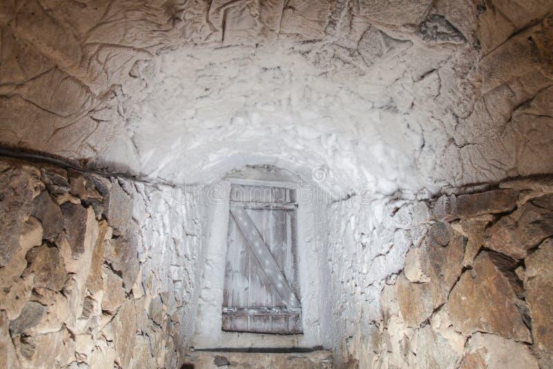 Cave froide avec la porte de vintage photographie stock libre de droits