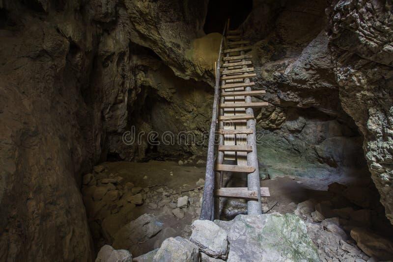 Cave stalagmites royalty free stock photos