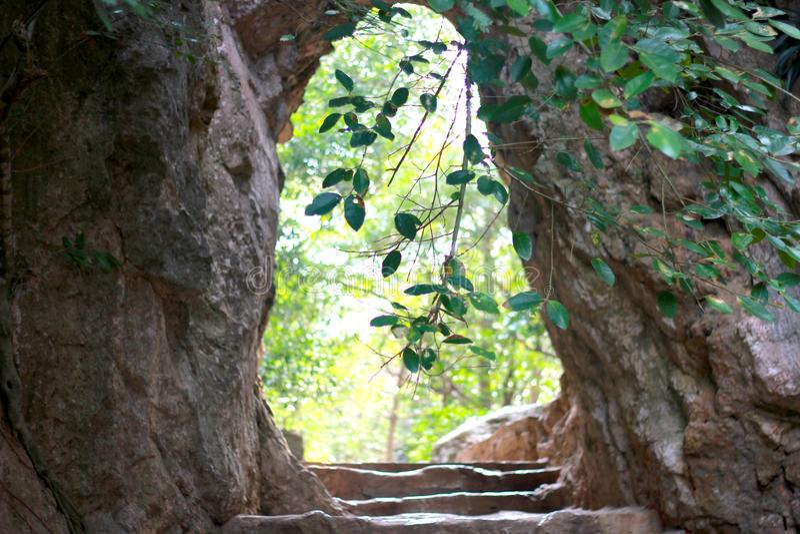 Cave in Vietnam stock images