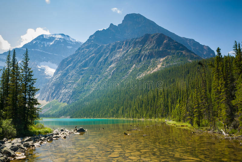 Cavell Lake in Jasper National Park, Canada. Crystal clear water of Cavell Lake at the foothill of Mount Edith Cavell in Jasper National Park, Canada royalty free stock images