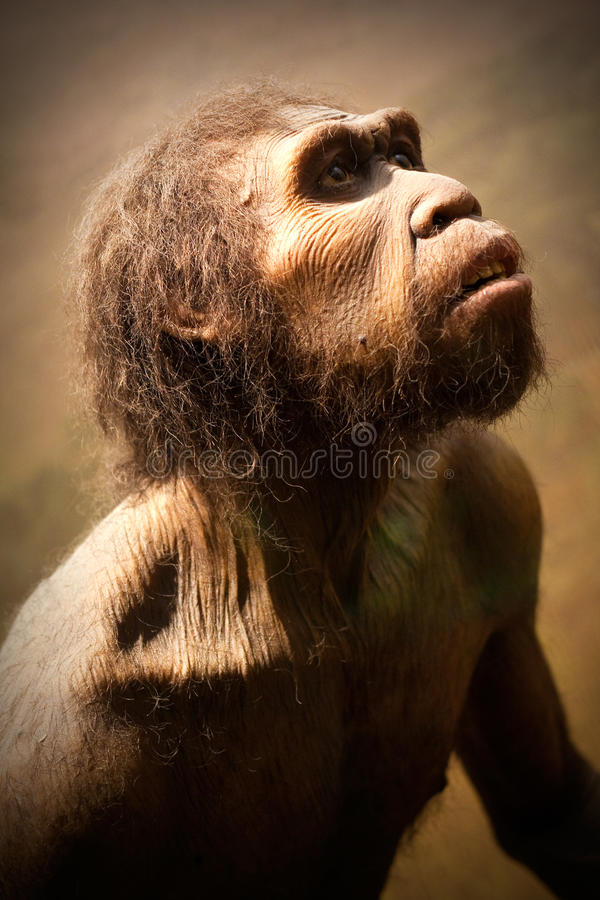 cavemanmodell royaltyfria bilder