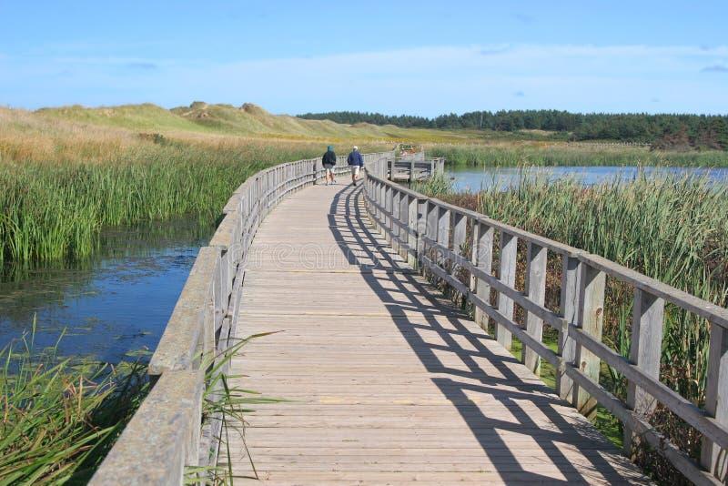 cavendish爱德华海岛国家公园王子 免版税库存图片