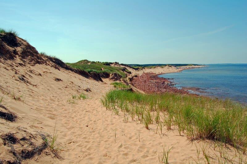 Cavendish beach royalty free stock photo