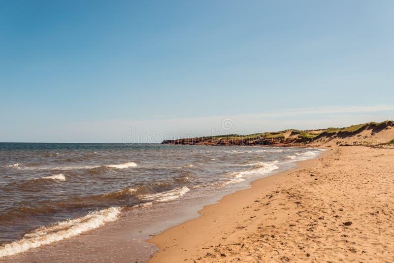 Cavendish strand i prinsen Edward Island National Park royaltyfri fotografi