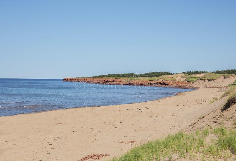 Cavendish strand, Prince Edward Island royaltyfri fotografi