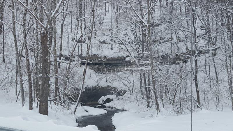 Download Caverna coberto de neve imagem de stock. Imagem de neve - 65580477