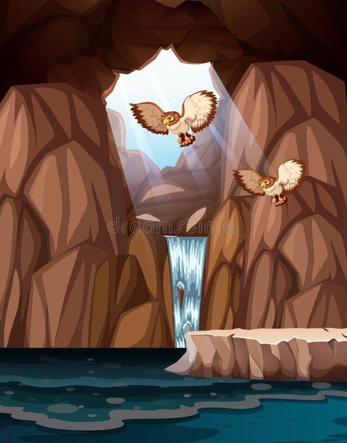Caverna com cachoeiras e corujas ilustração do vetor