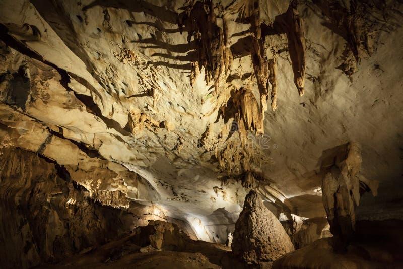 Caverna da pedra calcária no parque nacional de Gunung Mulu fotografia de stock royalty free