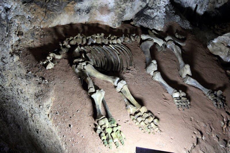Caverna de Emine Bayır Hasar, Crimeia fotos de stock royalty free