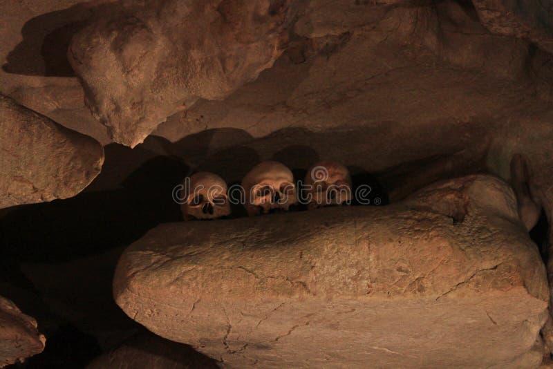 Caverna de esqueleto imagens de stock
