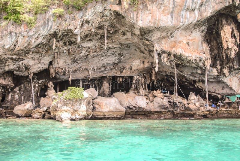 Caverna di Viking in cui i nidi del ` s dell'uccello sono raccolti Isola di Phi-Phi Leh in Krabi, Tailandia fotografia stock libera da diritti