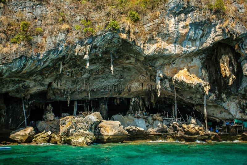 Caverna di Viking in cui i nidi dell'uccello sono raccolti fotografia stock libera da diritti