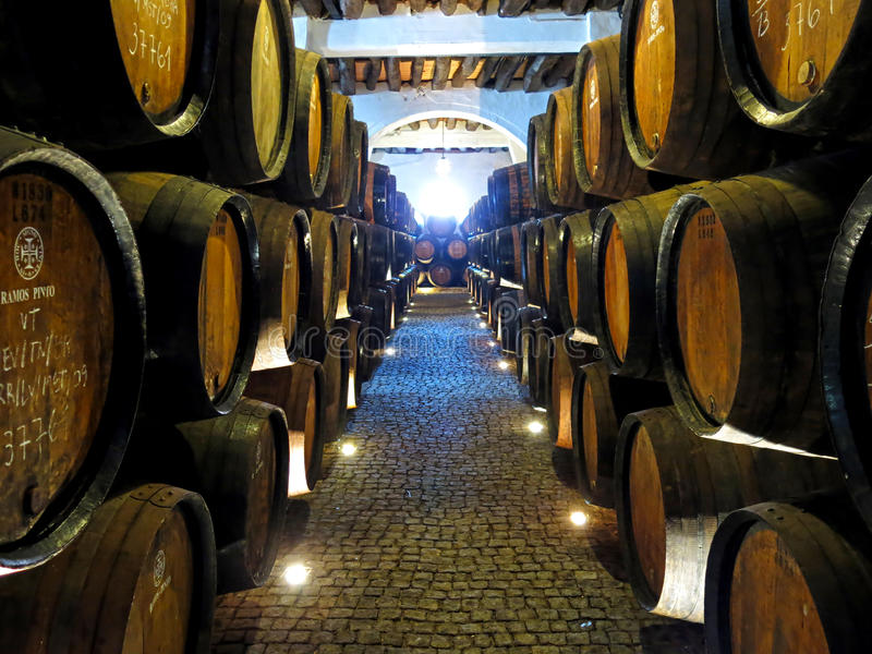Caverna do vinho de Porto fotografia de stock royalty free