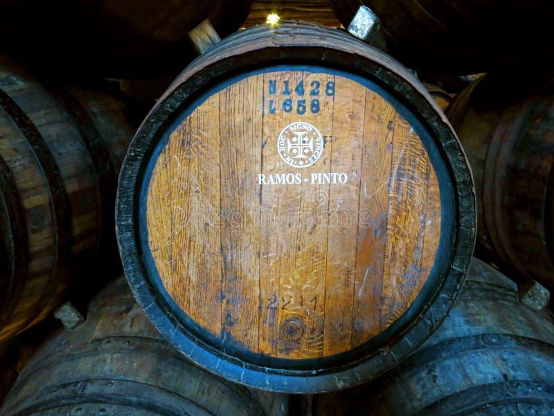 Caverna do vinho de Porto imagens de stock royalty free