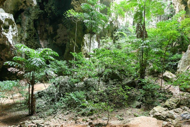 Caverna tropical Enchanting da montanha foto de stock royalty free