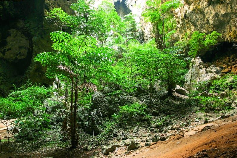 Caverna tropical Enchanting da montanha foto de stock