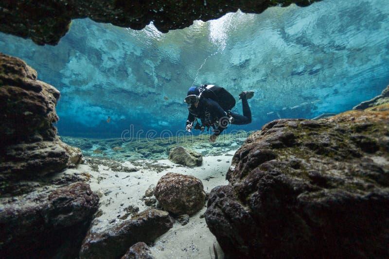 Cavernas subaquáticas Ginnie Springs Florida de mergulho EUA dos mergulhadores imagem de stock