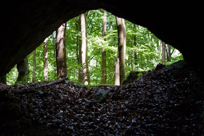 Caverne dans la forêt photos stock