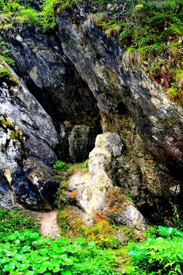 Caverne dans le passage d'Odancusii en montagnes d'Apuseni, la Transylvanie image libre de droits