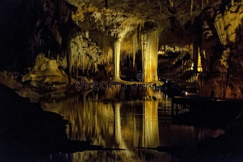 Caverne de lac - Forest Grove images libres de droits