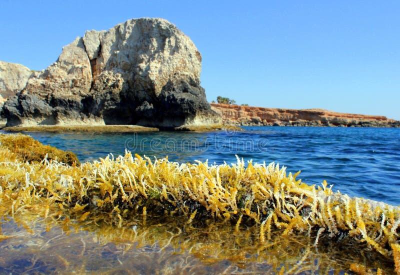 Caverne de mer photographie stock