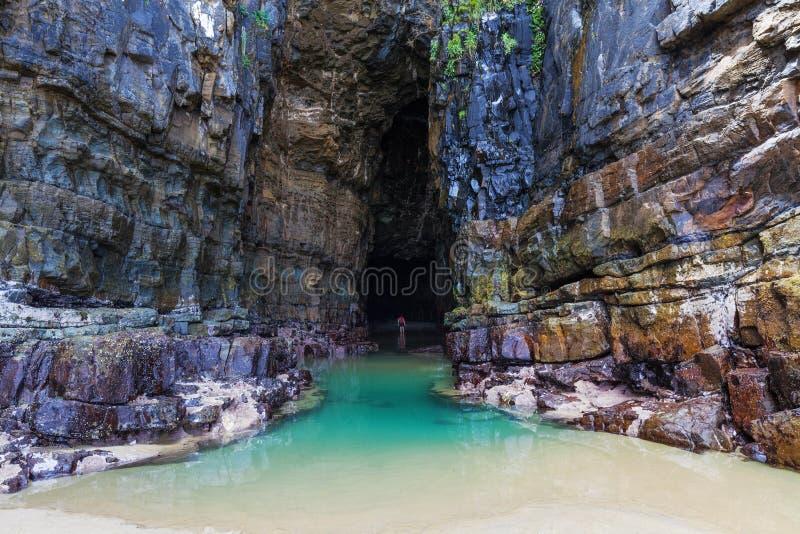 Caverne maestose della cattedrale, Catlins, Nuova Zelanda fotografia stock libera da diritti