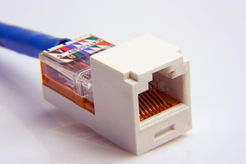 Cavi della rete di trasmissione di dati immagine stock