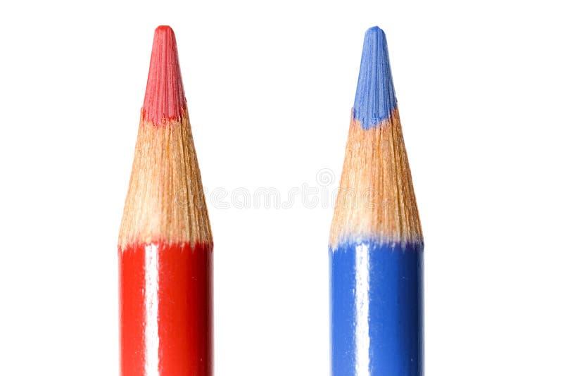 Cavi di coloritura fotografia stock libera da diritti