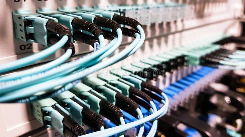 Cavi a fibre ottiche ad alta velocit? variopinti collegati al commutatore dell'attrezzatura dei server di rete della nuvola dentr immagini stock libere da diritti